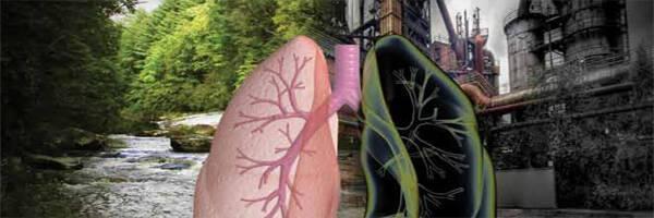 Αποτέλεσμα εικόνας για καρκινος πνευμονα