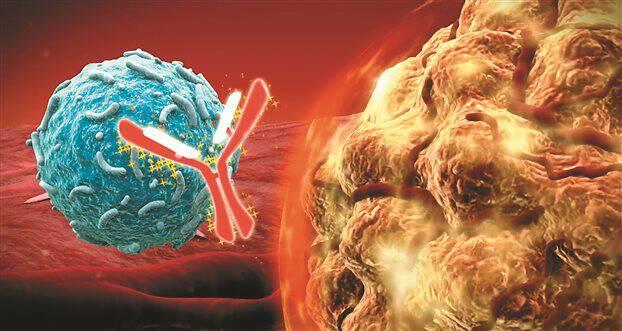 Aνοσοθεραπεία: Το μαγικό κλειδί κατά του καρκίνου!!!