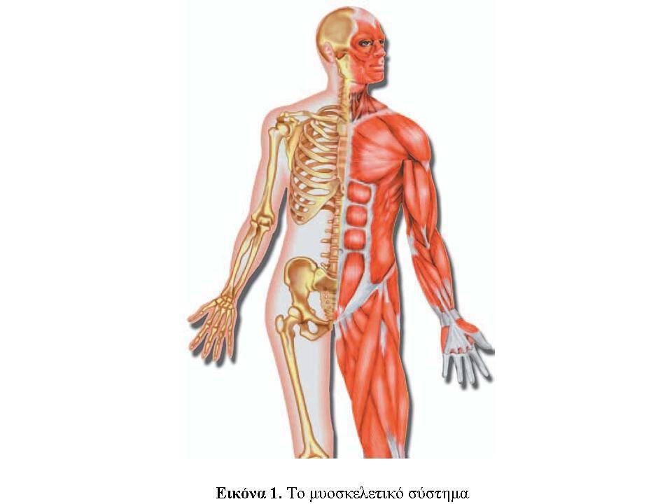 Τι είναι οι ρευματικές παθήσεις, τα «αρθριτικά» ή τα «ρευματικά»