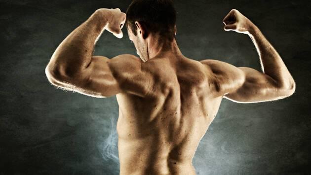 bodybuilder-