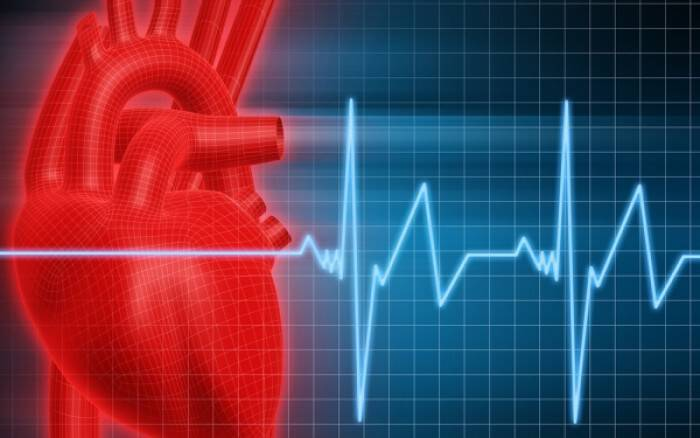 Το μυρωδικό που εμποδίζει την εξέλιξη της καρδιοπάθειας
