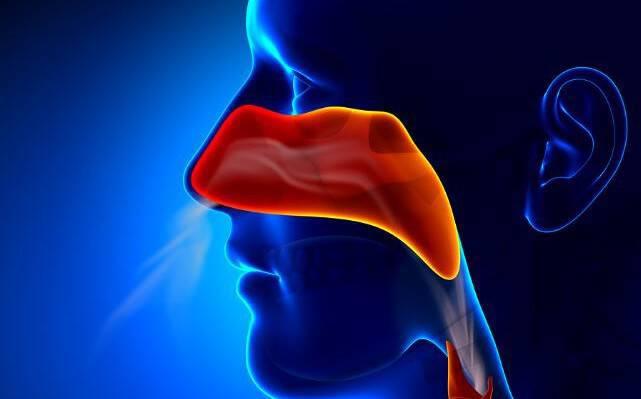 Δείτε γιατί συχνά έχετε βουλωμένη μύτη όταν κάνει πολύ ζέστη