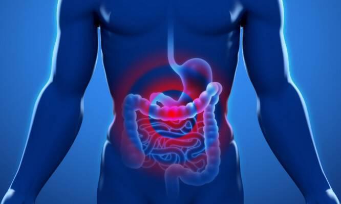 Καρκίνος του παχέος εντέρου: Ασπίδα προστασίας από ΜΙΑ βιταμίνη – Τι βρήκαν οι επιστήμονες