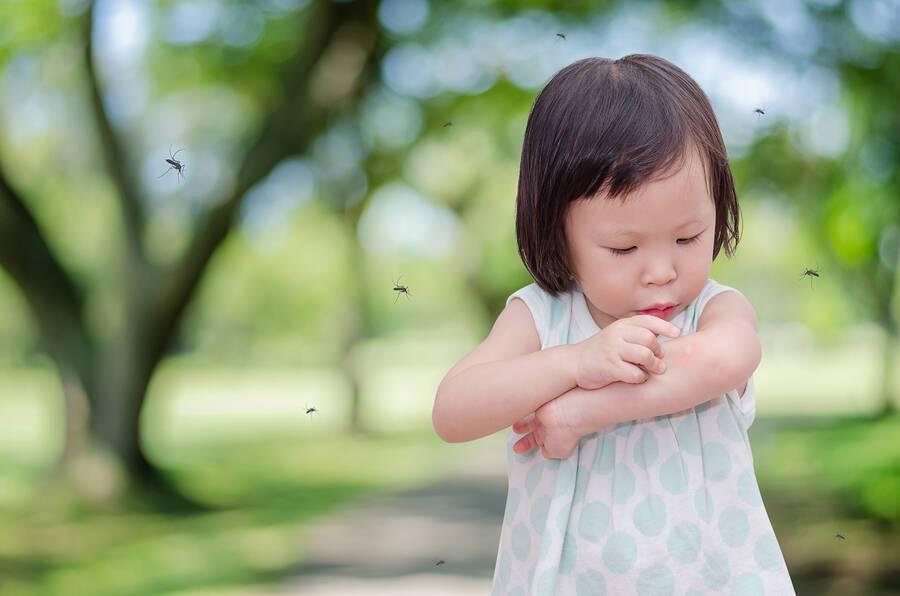 Πώς θα επιλέξετε το κατάλληλο απωθητικό κουνουπιών για το παιδί σας