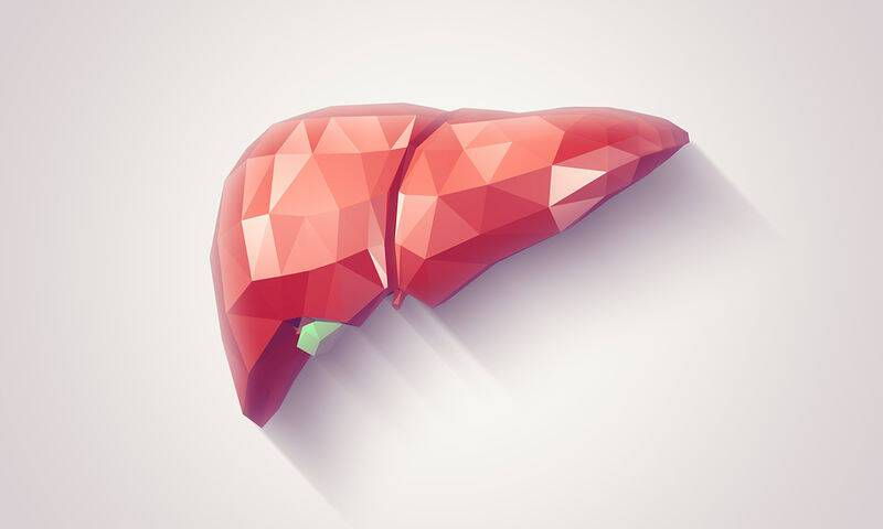 bigstock-Liver-Faceted-99430166