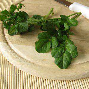 Fresh watercress bunch on wooden cutting board