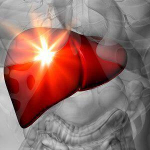 bigstock-Liver-Male-anatomy-of-human-66113698