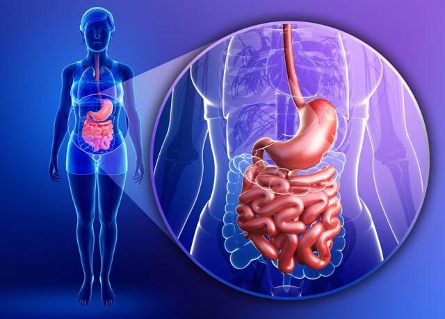 Ορθοκολικός καρκίνος: Πιο επικίνδυνος στη δεξιά πλευρά του παχέος εντέρου