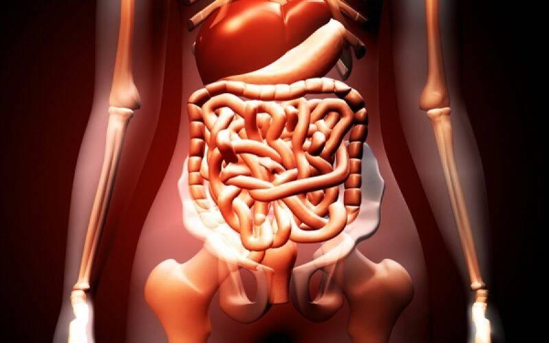 Η βιταμίνη Α ως πιθανή θεραπεία του καρκίνου του παχέος εντέρου