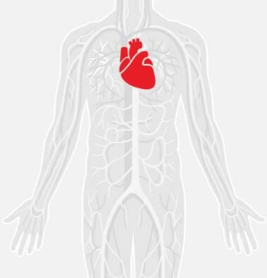 Τεστ: Υπολογίστε την ηλικία της καρδιάς σας