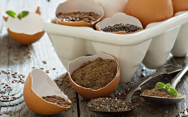 Ποιες φυτικές τροφές μπορούν να αντικαταστήσουν ζωικές