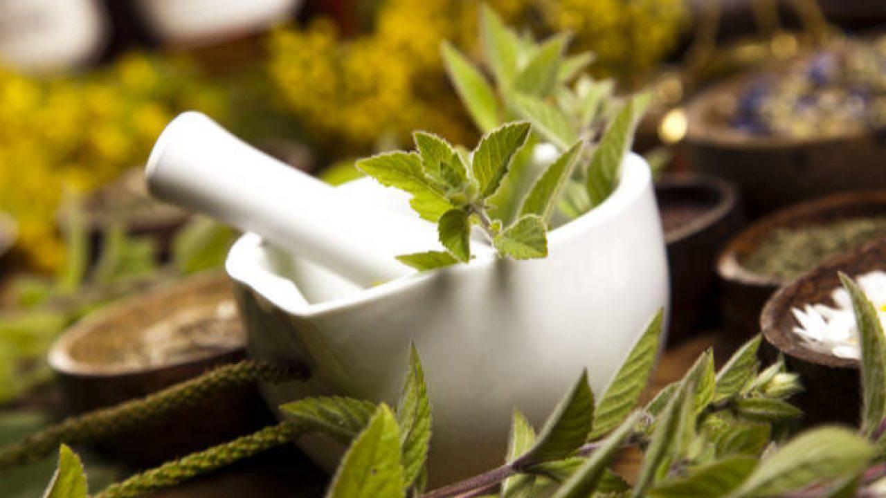 Ένας από τους διάφορους τρόπους που μπορεί να επωφεληθεί κανείς από τα φαρμακευτικά φυτά είναι η παρασκευή αφεψήματος.